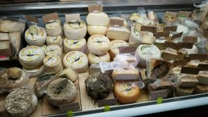 A refrigerator case with a selection of Italian cheeses